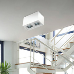 AZzardo Eloy 2 White/Alu - Ceiling - AZZardo-lighting.co.uk